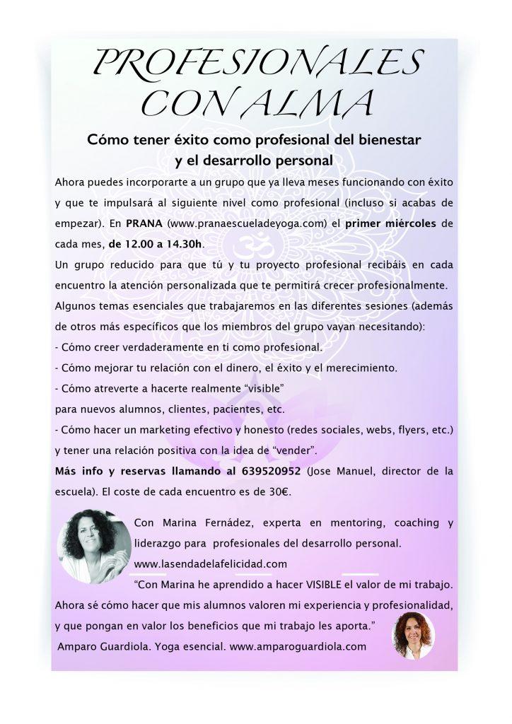 flyer_profesionales_alma
